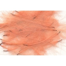 Plume CDC Petitjean Pink / Rose