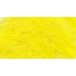 Plume CDC Petitjean Light Yellow
